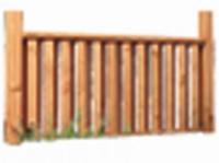 Front zur Douglasie Überd. 1, 2,3 Höhe 0,93